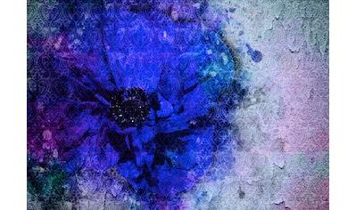 CONSALNET Vliestapete »Blaue Vintage Blume«, in verschiedenen Größen kaufen