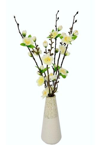 I.GE.A. Kunstblume »Kirschblütenbund«, Vase aus Keramik kaufen