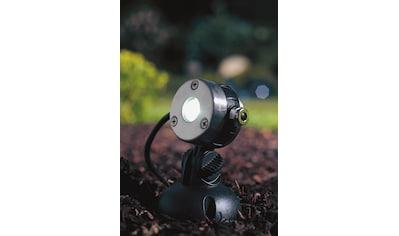 OASE Teichbeleuchtung »LunAqua Mini«, LED 3er - Set, je 1 Watt kaufen
