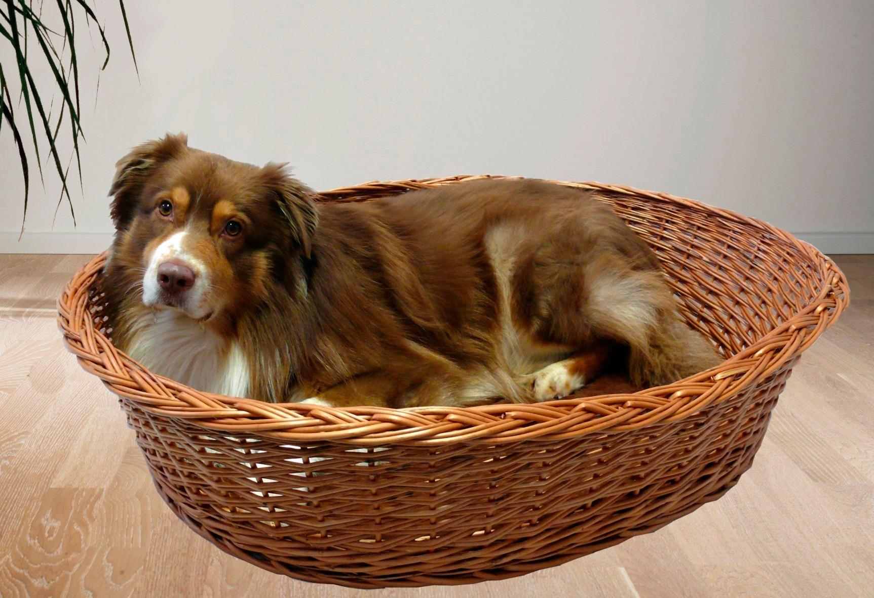 SILVIO DESIGN Hundekorb und Katzenkorb »Weide Ruhekorb mit Kissen«   Garten > Tiermöbel > Katzenkörbe   Braun   SILVIO DESIGN