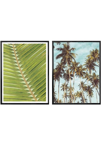 Wall-Art Poster »Palmenblätter«, (Set, 2 St.), mit Rahmen, Poster, Wandbild, Bild, Wandposter kaufen