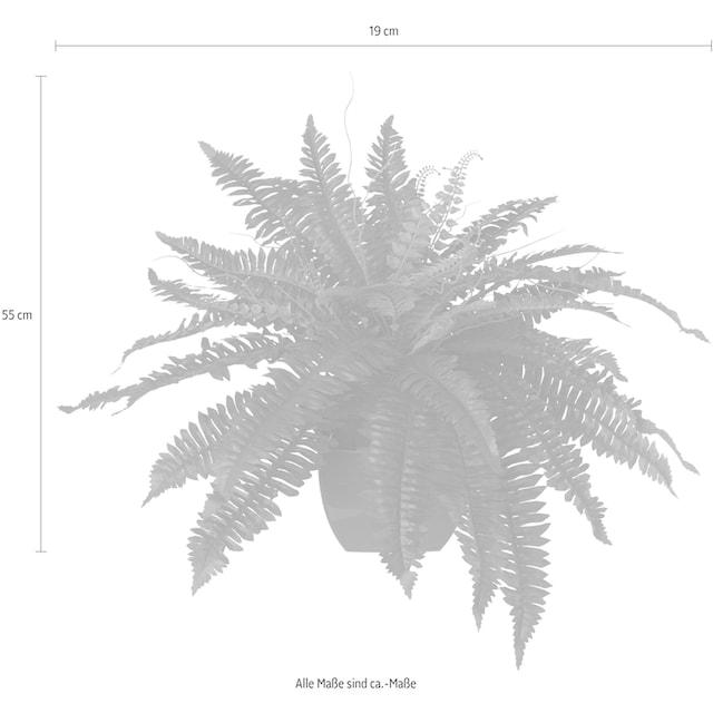Creativ green Kunstpflanze (1 Stück)