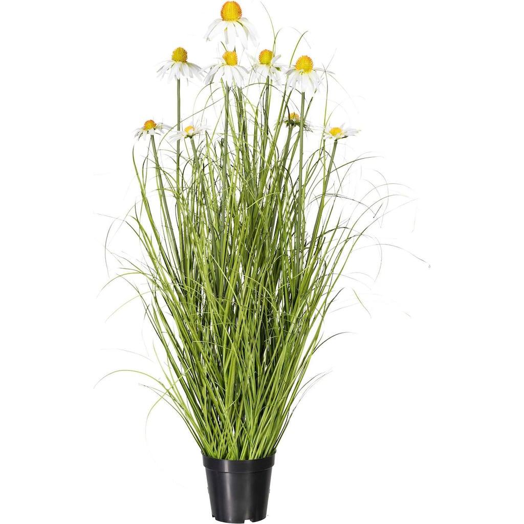 Creativ green Kunstpflanze »Grasbusch«