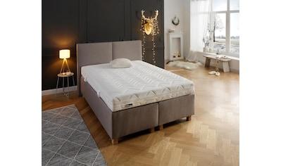 fan Schlafkomfort Exklusiv Taschenfederkernmatratze »Multiplus T«, 19 cm cm hoch, 544... kaufen
