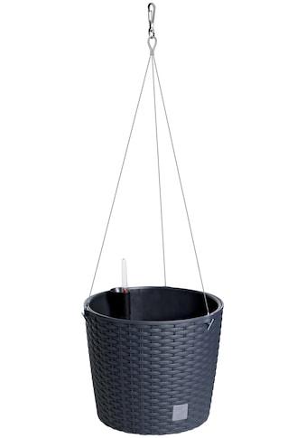 Prosperplast Blumentopf »Hängeampel Rato«, Ø 25,6 kaufen