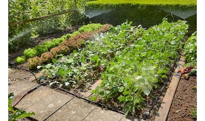 GARDENA Bewässerungssystem »Micro-Drip-System, 13015-20«, Start-Set Pflanzflächen kaufen