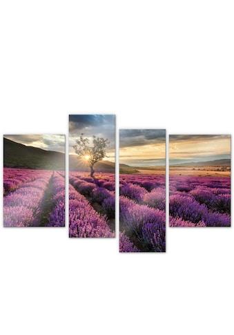 Wall-Art Mehrteilige Bilder »Lavendelblüte Provence 4-tlg«, (Set, 4 St.) kaufen