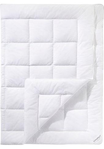 Schlafgut Microfaserbettdecke »Pure«, leicht, (1 St.), anschmiegsames Schlafgefühl mit... kaufen