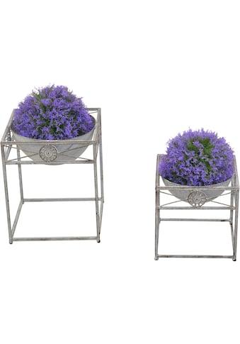 Home affaire Blumentopf (Set, 2 Stück) kaufen