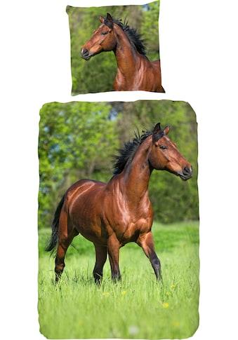 good morning Kinderbettwäsche »Running horse«, mit Pferden kaufen