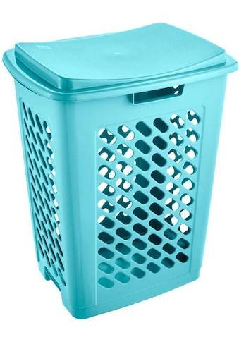 keeeper Wäschebox »piet«, (1 St.) kaufen