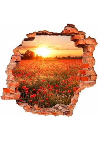 Wandtattoo »Mohnfeld im Sonnenuntergang« kaufen