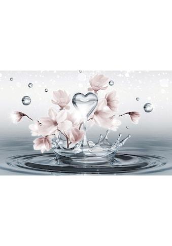 CONSALNET Fototapete »Magnolie 3D im Wasser«, Papier, in verschiedenen Größen kaufen