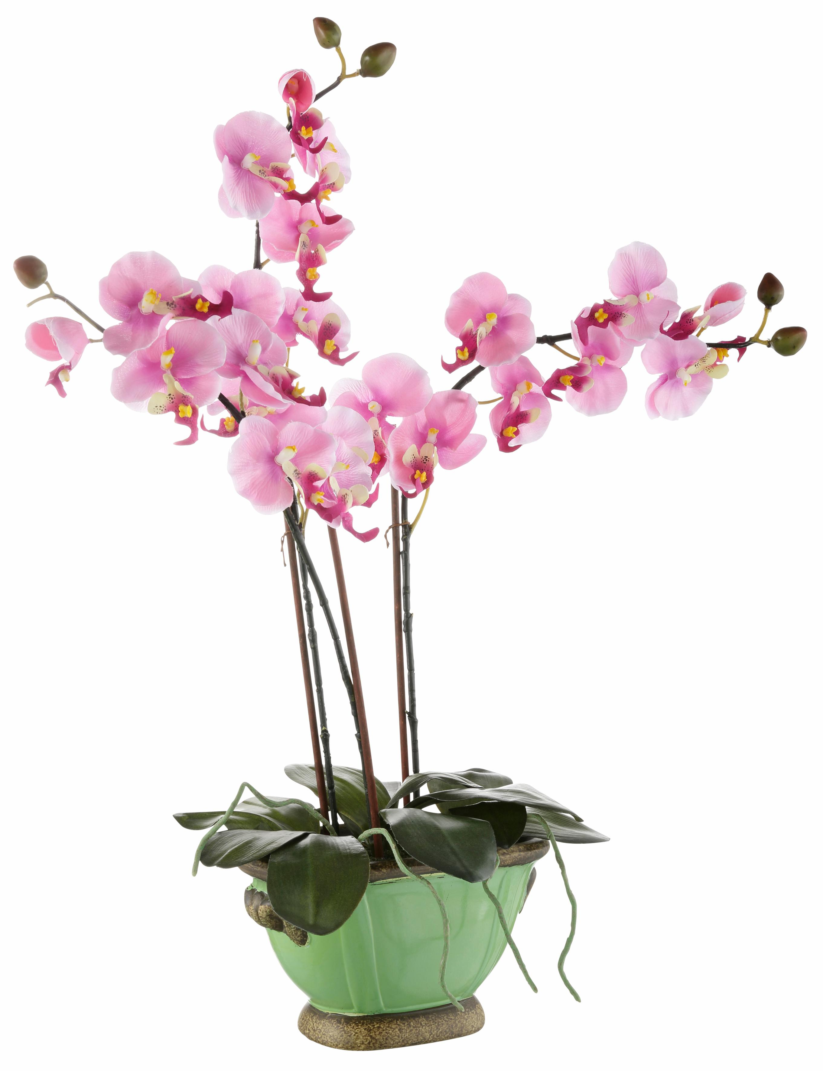 Home affaire Kunstpflanze »Orchidee« (1 Stück) | Dekoration > Dekopflanzen | home affaire