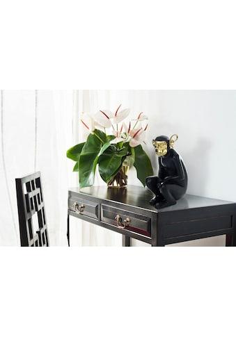 Kayoom Dekofigur »Sitting Monkey 300« kaufen