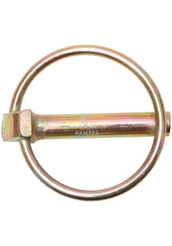 RAMSES Klappstecker , mit Schaft 4,5 x 40 mm Stahl verzinkt 10 Stück kaufen