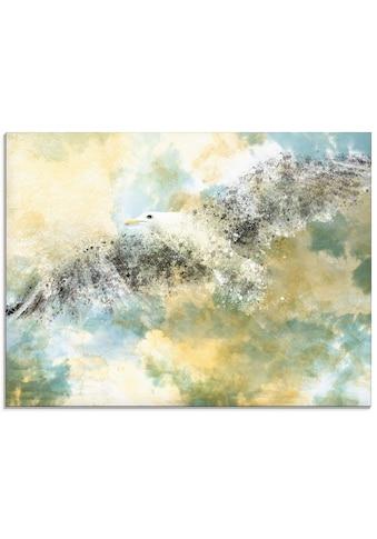 Artland Glasbild »Verschwindende Möwe«, Vögel, (1 St.) kaufen