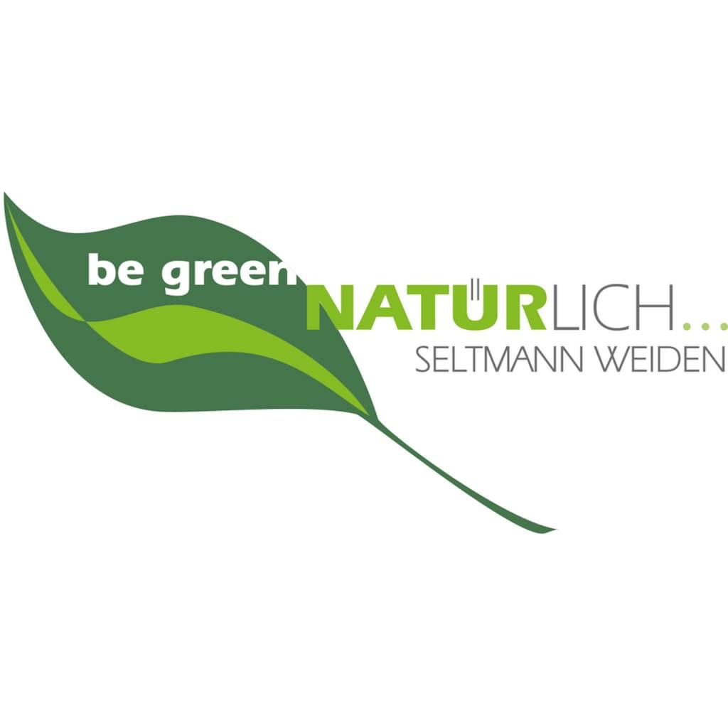 Seltmann Weiden Tafelservice »Marieluise«, (Set, 12 tlg.), Mikrowellengeeignet