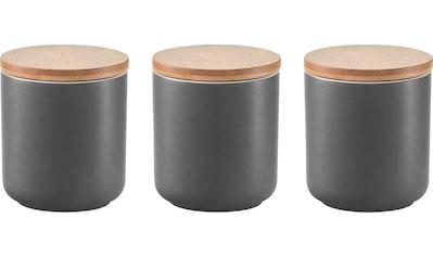 Zeller Present Gewürzbehälter, (Set, 3 tlg.) kaufen