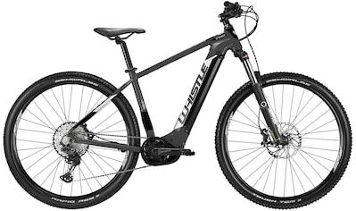 Whistle E - Bike »B - Race 600«, 9 Gang Shimano Altus SGS Shadow Schaltwerk, Kettenschaltung, Mittelmotor 250 W kaufen