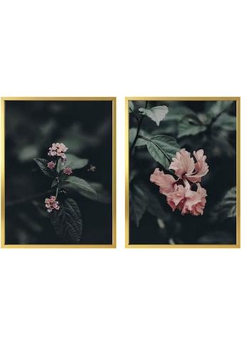 Wall-Art Poster »Rosa Blüten«, (Set), mit Rahmen, Poster, Wandbild, Bild, Wandposter kaufen