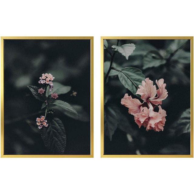 Poster »Rosa Blüten« (Set)