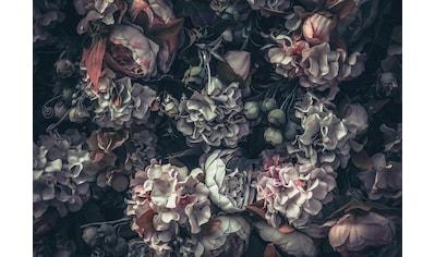 CONSALNET Vliestapete »Blumen Vintage Muster«, in verschiedenen Größen kaufen