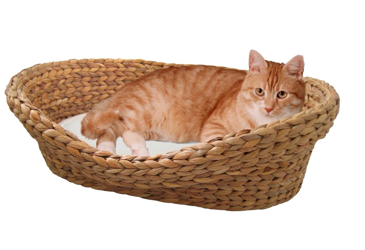 Silvio Design Katzenkorb »Wasserhyazinthe« | Garten > Tiermöbel > Katzenkörbe | SILVIO DESIGN