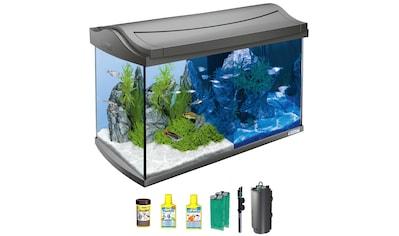 TETRA Aquarium »AquaArt LED Discovery Line«, 60 Liter, BxTxH: 61,5x34x43,5 cm, anthrazit kaufen