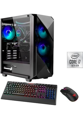 Hyrican »Striker 6617« Gaming - PC (Intel, Core i7, RTX 3060 Ti, Wasserkühlung) kaufen