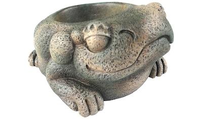 EXO TERRA Terrariendeko »EX Aztec Frosch«, Wassernapf kaufen