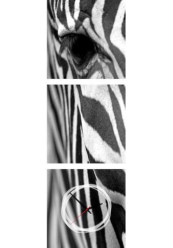 Conni Oberkircher´s Bild »Zebra« (Set) kaufen