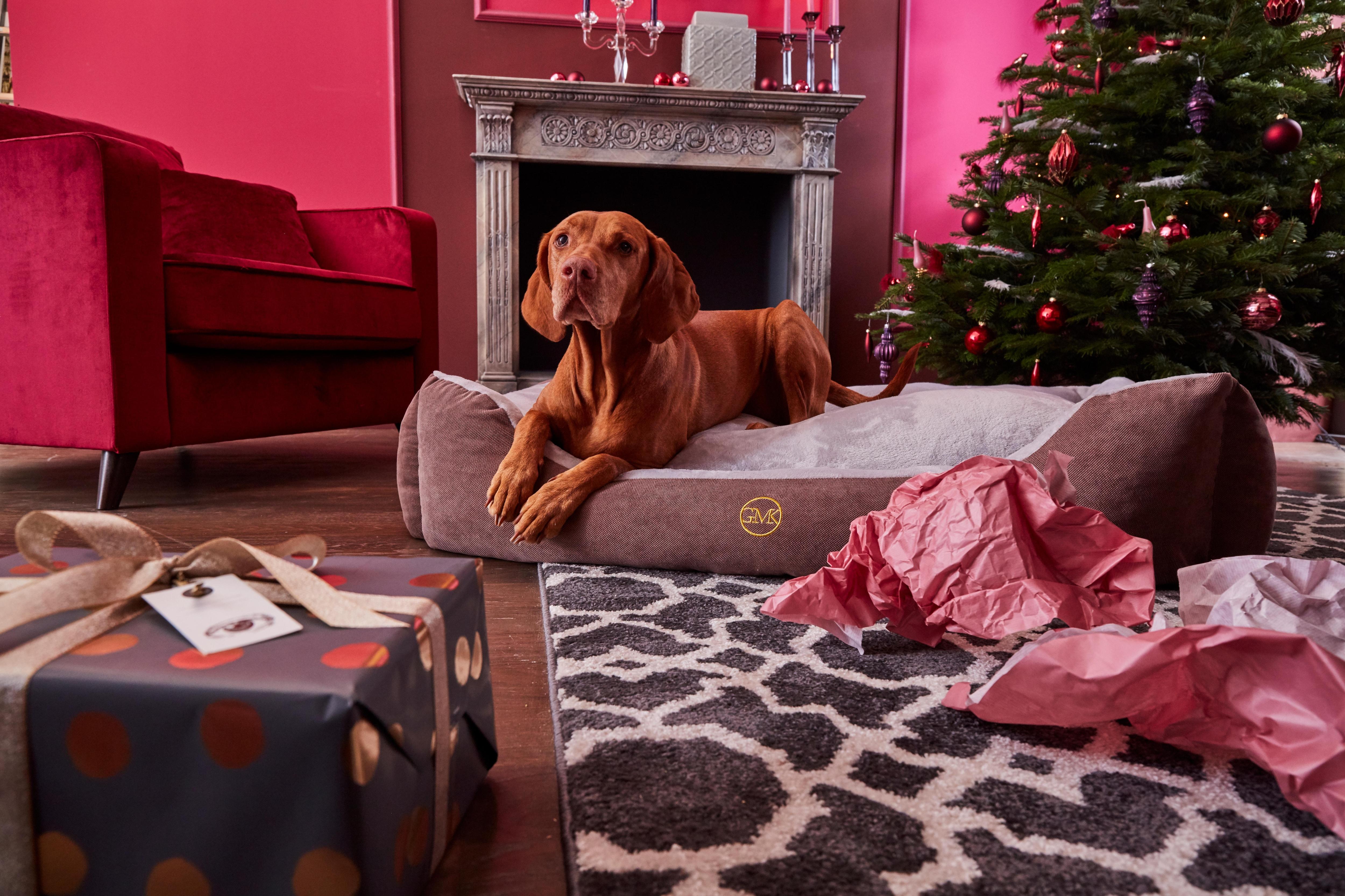 Hundebett, »Guido«, GMK Home & Living   Garten > Tiermöbel > Hundekörbe-Hundebetten   Wo - Polyester   GUIDO MARIA KRETSCHMER HOME & LIVING