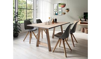 Homexperts Essgruppe »Till und Kaja« (Set, 5 - tlg Esstisch mit 4 Stühlen) kaufen
