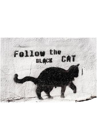 Art & Pleasure Metallbild »Follow the black cat« kaufen