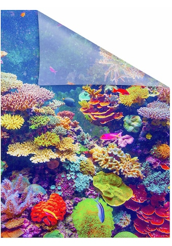 Fensterfolie, »Aquarium«, LICHTBLICK, blickdicht, strukturiert kaufen