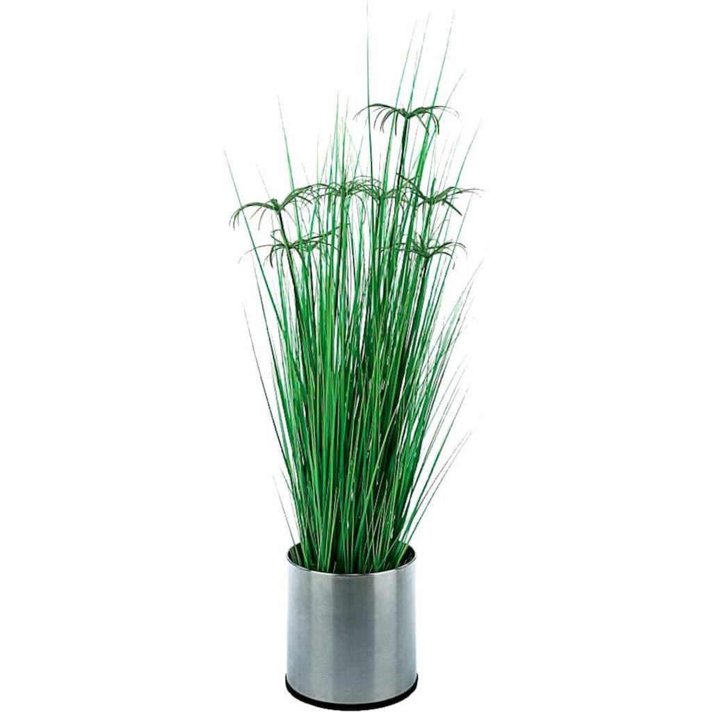 Schneider Kunstpflanze »Zyperngras«