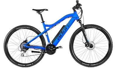 Adore E - Bike »Enforce«, 24 Gang Shimano Acera Schaltwerk, Kettenschaltung, Heckmotor 250 W kaufen