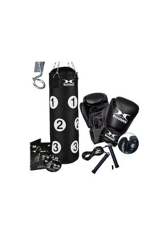 Hammer Boxsack »Sparring Professional« (Set, mit Trainings - DVD, mit Boxhandschuhen, mit Sprungseil, mit Haken) kaufen