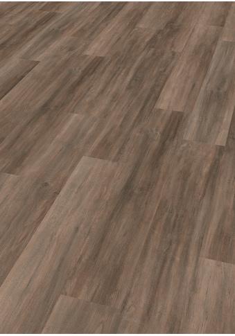 EGGER Laminat »HOME Ampara Eiche grau«, ohne Fuge, 2,481 m²/Pkt., Stärke: 7 mm kaufen