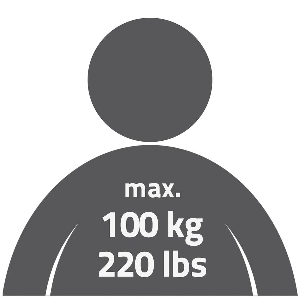 Ridder Haltegriff »Premium«, belastbar bis 100 kg, mit Saugnäpfen
