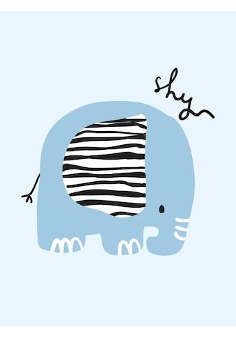 Lüttenhütt Leinwandbild »shy« kaufen