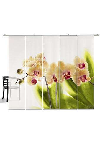 Schiebegardine, »Orchidee«, emotion textiles, Klettband 5 Stück kaufen