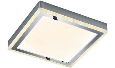 TRIO Leuchten,Deckenleuchte»SLIDE«, kaufen
