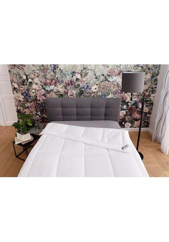 my home Kunstfaserbettdecke »Maret«, leicht, Füllung Polyester, Bezug Polyester, (1 St.), entspannt einschlafen mit einem Hauch von Lavendelduft! kaufen