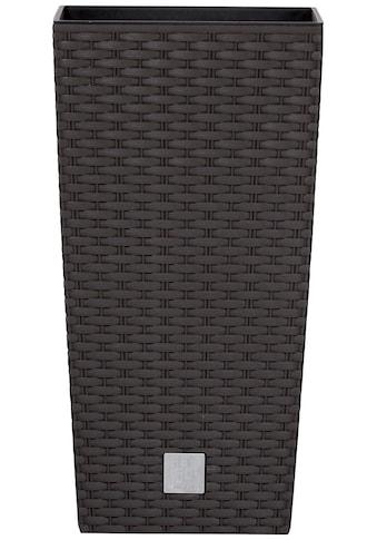 Prosperplast Pflanzkübel »Rato square«, BxTxH: 22,5x22,5x42,1 cm kaufen