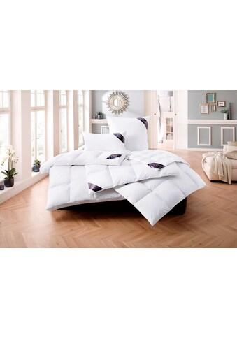 Daunenbettdecke + Daunenkissen, »Lugano«, Excellent, (Spar - Set) kaufen