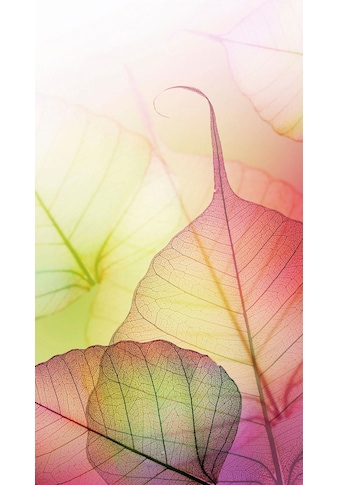 Wall-Art Fototapete »Pink Design« kaufen