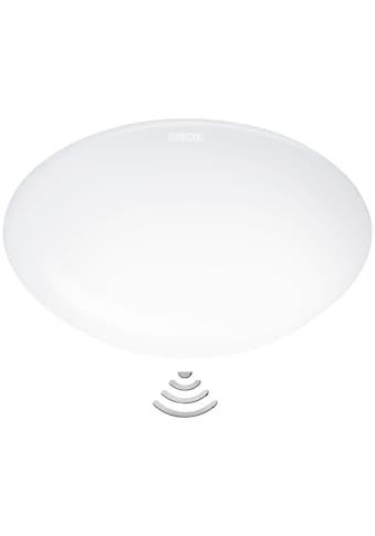 STEINEL Innensensorlampe »RS 160 LED« kaufen