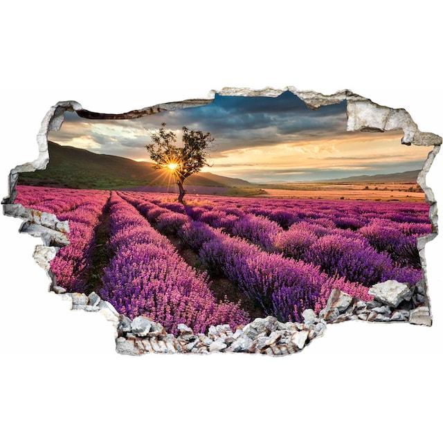 Wandtattoo »Lavendel in der Provence«